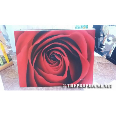 Rose Painting, Furnishing, Wall Decoration
