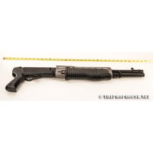 Gun110