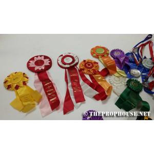 Assorted Ribbon Awards